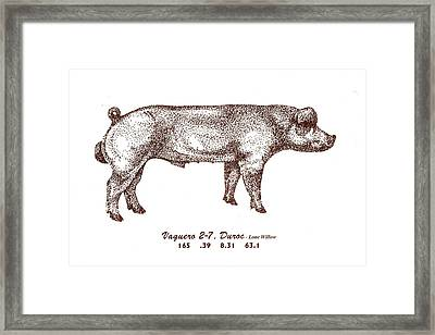 Framed Print featuring the drawing Danish Duroc by Larry Campbell