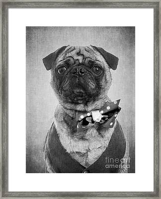 Dapper Dog Framed Print by Edward Fielding