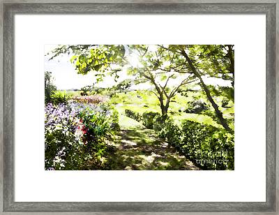 Dappled Garden Framed Print by Linde Townsend
