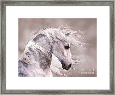 Dappled Grey Horse Head Profile Framed Print