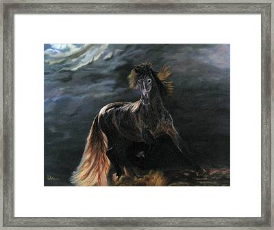 Dappled Horse In Stormy Light Framed Print