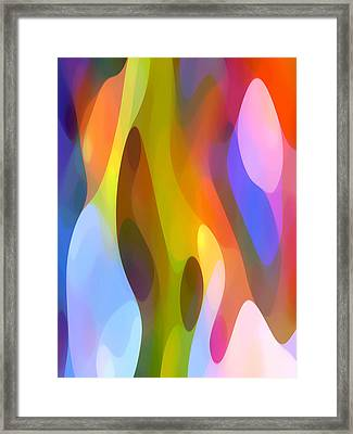 Dappled Light 4 Framed Print by Amy Vangsgard