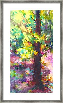 Dappled - Light Through Tree Canopy Framed Print by Talya Johnson