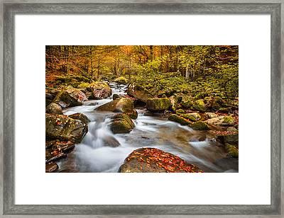 Dardagna River Framed Print