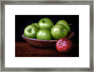 Dare To Be Different 4 Framed Print by Nikolyn McDonald