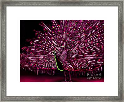 Dare To Be Different Series  Framed Print by Karen Sheltrown