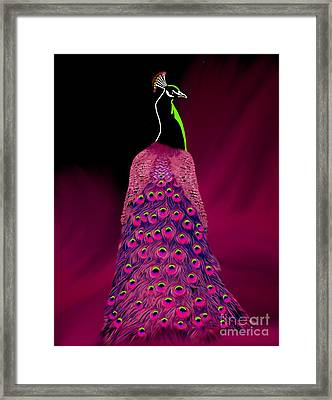 Dare To Be Different Series Three Framed Print by Karen Sheltrown