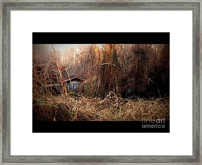 Dare To Enter Framed Print by Christy Ricafrente