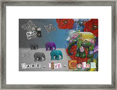 Dare To Live In Color Framed Print by Nola Lee Kelsey