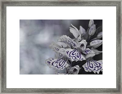 Dark Angel Of Flowers Framed Print