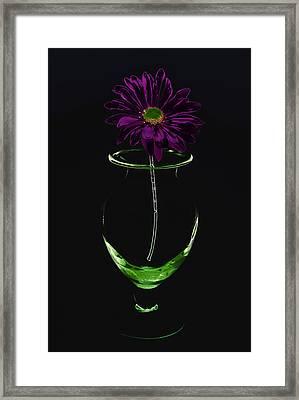Dark Bloom Framed Print
