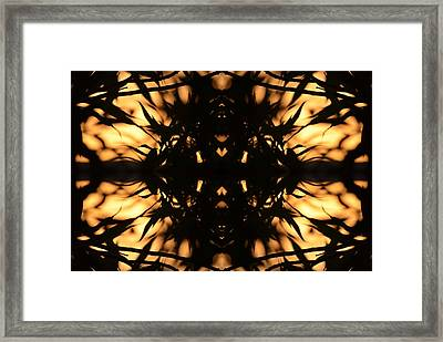 Dark Flame Of Nature Framed Print