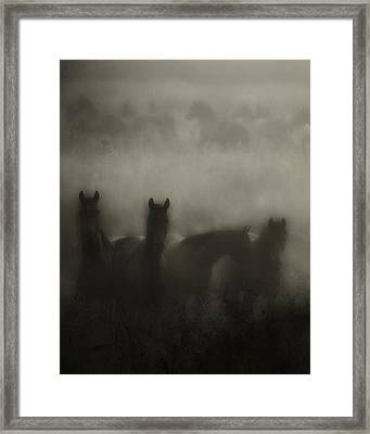 Dark Horse Dreams Framed Print by Ron  McGinnis