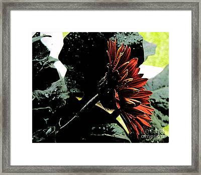 Dark Love Framed Print by Lorraine Heath