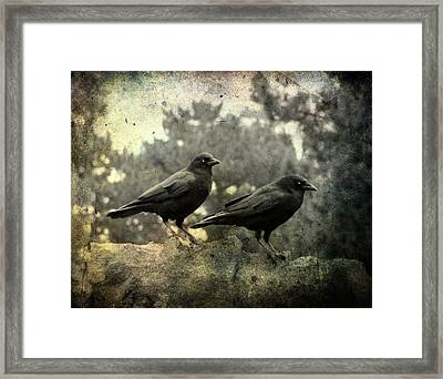 Dark Nature Framed Print by Gothicrow Images