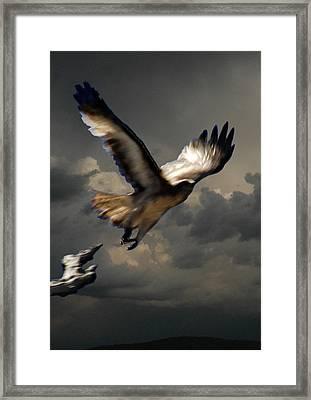 Dark Night Framed Print