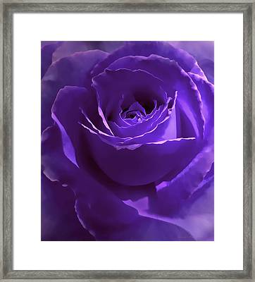 Dark Secrets Purple Rose Framed Print by Jennie Marie Schell
