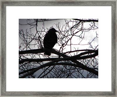 Framed Print featuring the photograph Dark Sentinel by Brian Stevens