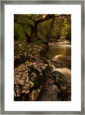 Darkness Becomes Light Framed Print
