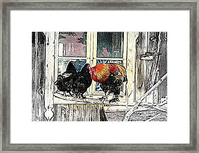 Darling, Stay At Home, It's Cold Outside Framed Print by Hilde Widerberg