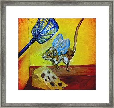 Darn Mouse Flies On Swiss Framed Print
