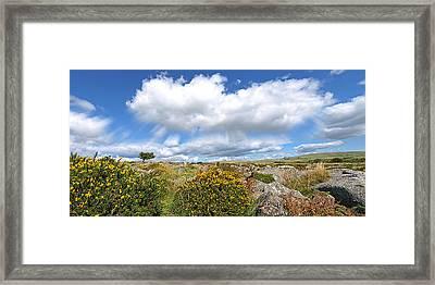 Dartmoor Panoramic Framed Print