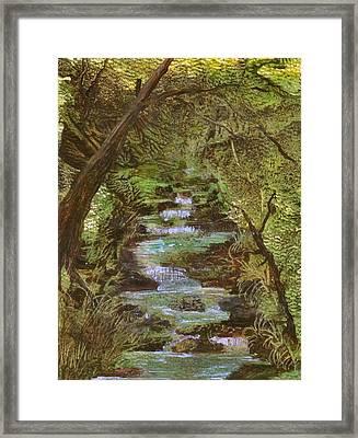 Dartmoor River Framed Print by Carol Rowland