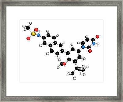 Dasabuvir Hepatitis C Virus Drug Molecule Framed Print by Molekuul