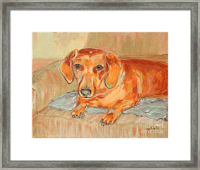 Framed Print featuring the painting Daschund Portrait by Jeanne Forsythe