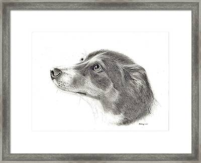 Dash Framed Print by Mary Mayes
