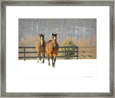 Dashing Through The Snow Framed Print