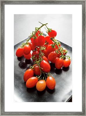 Datterino Tomatoes Framed Print