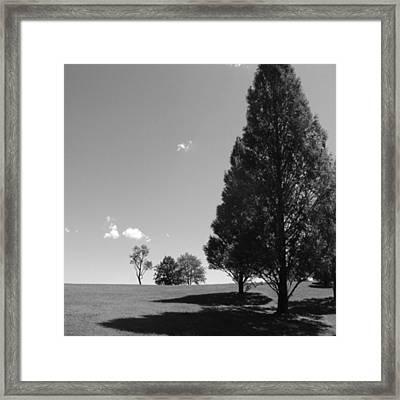 Davenport Park Framed Print
