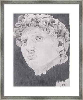 David Framed Print by Crosson Nipper