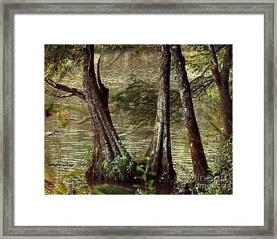 Davids River Framed Print