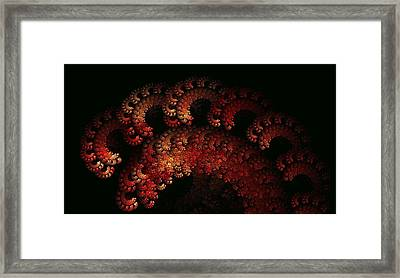 Dawali Dragon Framed Print by Doug Morgan
