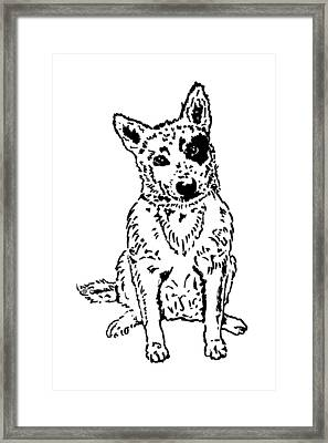 Dawg Framed Print by Jacqueline Eden
