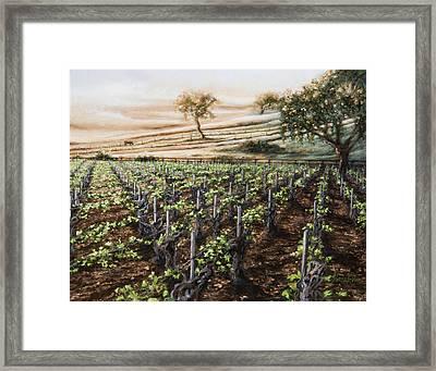 Dawn At Gainey Framed Print