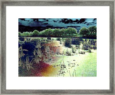 Dawn Breaking On South Florida Marshland Framed Print