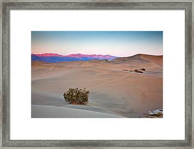 Dawn Dunes Framed Print by Peter Tellone
