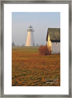 Dawn Fog Framed Print by Catherine Reusch Daley