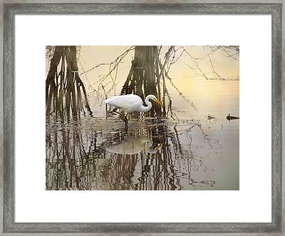Dawn Hunter Framed Print