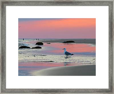 Framed Print featuring the photograph Dawn In Pink by Dianne Cowen