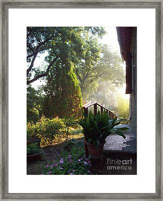Dawn In Podere Maria-cristina Framed Print