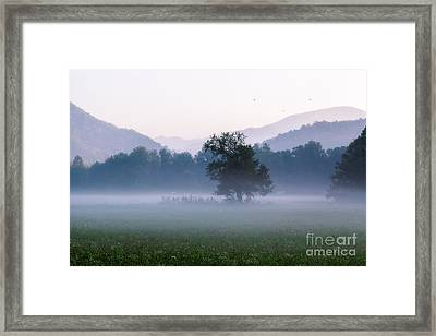 Dawn In The Mountains Framed Print
