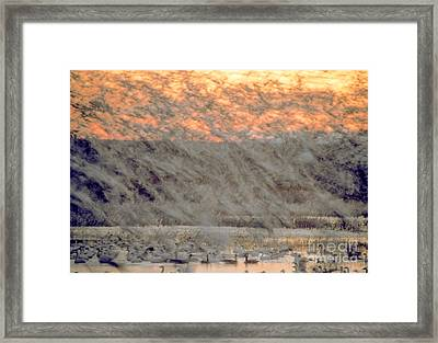 Dawn Liftoff Framed Print by Steven Ralser