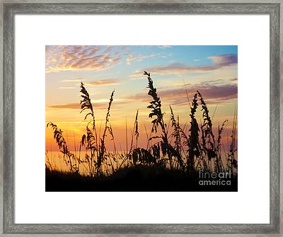 Dawn Framed Print by Megan Dirsa-DuBois