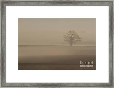 Framed Print featuring the photograph Dawn Mist  by Gary Bridger