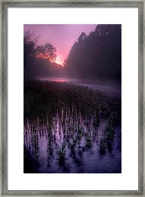 Dawn Mist Framed Print by Robert Charity