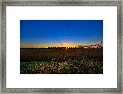 Dawn Of A New Day Framed Print